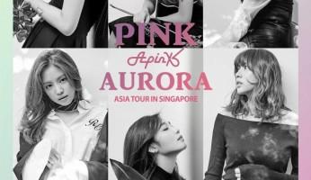 apink-pink-aurora-asia-tour-in-sg